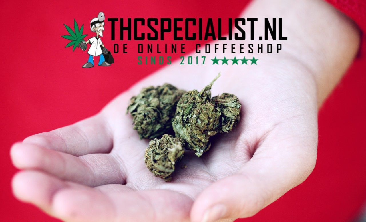 Buy THC oil from coffee shop and buy weed online