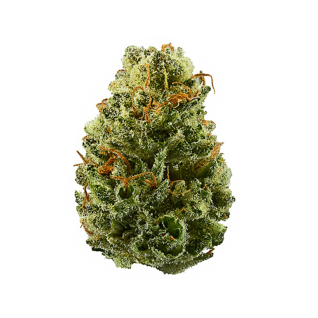 Strawberry_weed